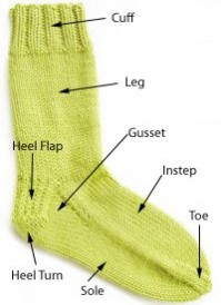 4885.sock_anatomy-copy.jpg-550x0-199x274